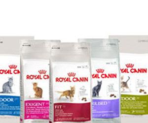 royal-canin-gatto