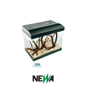 newa-acquario-30