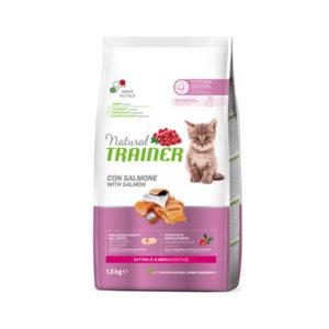 natural-trainer-gatti-kitten-SALMONE-15