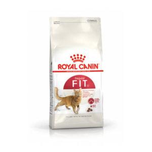 royal-canin-gatti-secco-FIT