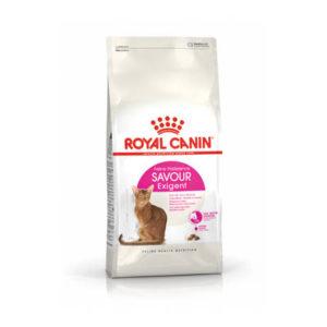 royal-canin-gatti-secco-savour