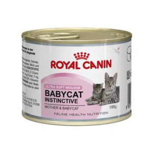 royal-canin-gatto-baby-instinct