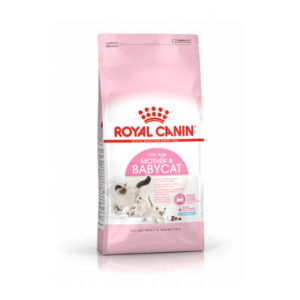 royal-canin-gatto-babycat