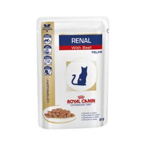 royal-canin-gatto-renal-manzo