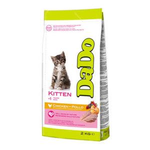 dado-gatto-kitten-pollo-1