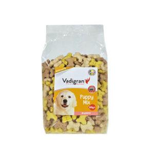 vadrigan-cani-puppy-mix-500