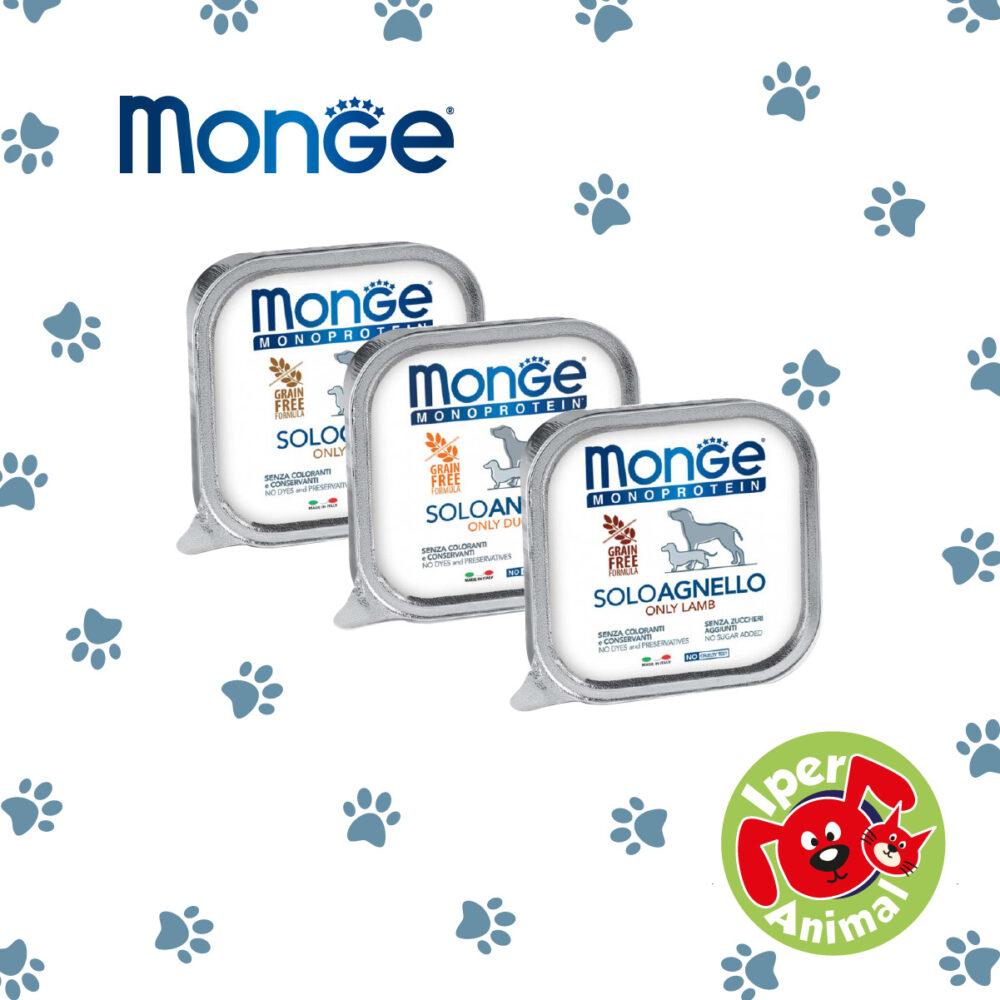 Monge-07