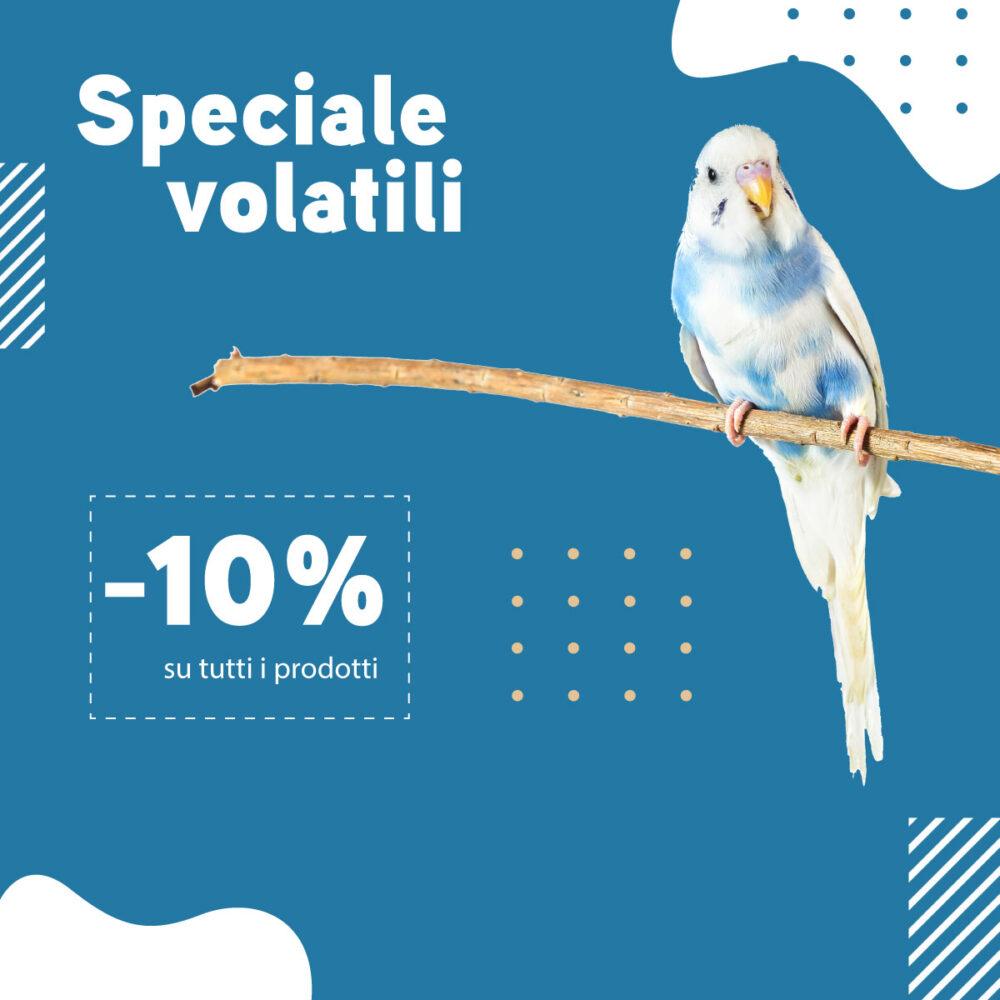 speciale-vOLATILI-sito2